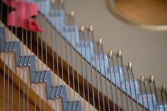 Steinway (Autumn Eden-Goodman) Tags: steinway piano detail pianowire wire ribbon pins macro