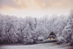 Hansel & Gretel (u c c r o w) Tags: snow snowy winter landscape forest nature germany german deutschland cottage fairy tale tree trees europe european uccrow frost frozen