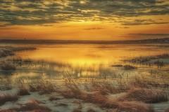 Sunrise - On Golden Pond (James P. Mann) Tags: duck pond water frozen sunrise golden reflections new brunswick canada