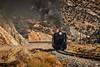 Keystone Run (benkuhns) Tags: steamlocomotive nevadanorthernrailway nnry elynv ely train 93 steam trains locomotive passenger alco