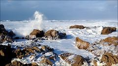 Quand la mer de lait prend forme humaine, elle danse ! (Phoebus58) Tags: lait milk latorche bretagne finistère brittany olympus wave écume foam shore paréidolie