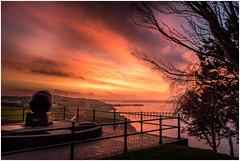 Rath Sunrise (garethleethomas) Tags: sunrise colour clouds landscape morning winter tree seascape sea coast home town sky wales uk greatbritain