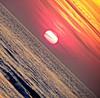 Netherlands sunset (chloe.iche) Tags: plage beach paysbas netherlands sunset couchédesoleil disquesolaire bleu rouge jaune blue red yellow merdunord northsea lahaye