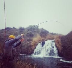 IMG_20180202_203421_855 (Red's Fly Shop) Tags: basincreeks desertcreeks wading wadefishing