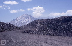 Steam emerging from Mount St Helens after 7 years (Mary Gillham Archive Project) Tags: 1987 87215 geology landscape mountsthelens usa volcano washington