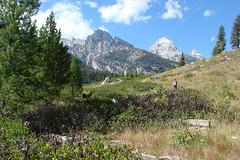 Taggart-Lake-Hike-9-15-10-T (DMREAnne) Tags: mountains mountain wyoming wyomingusa grandtetonnationalpark grandteton tetons nationalparks nationalparksusa trails trail hiking hikingtrails