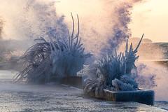 Froid polaire sur le Léman (MarKus Fotos) Tags: chablais canon hautesavoie hiver winter glace glaçon polaire froid frozen france evian landscape léman leman lac lake ice