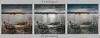 Treibgut - flotsam (6 Sichtweisen) Tags: collage überschwemmung flooding treibgut flotsam rhein rheinriver hightide hochwasser