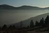Voile de brume... (Gisou68Fr) Tags: hilsen alsace france grandest brume grandballon neige snow hiver winter 2018 janvier canoneos650d