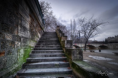 The stairs (marko.erman) Tags: paris france seine notredamedeparis city town river church cathedral stairs riverside badweather water tree winter wet rain sony wideangle iledefrance notredame