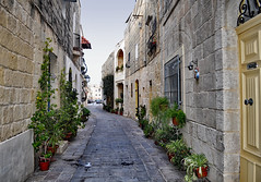 Street in Naxxar (Jocelyn777) Tags: buildings architecture streets villages towns historictowns stonehouses stones plants cobblestones malta travel