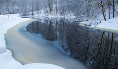 Tranquil Stream (bjorbrei) Tags: river stream shore winter snow ice trees reflections frysja kjelsås akerselva oslo norway tranquil water