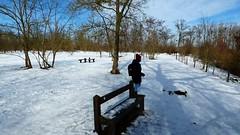 P1070790 Nature temps de neige 70 (personne) -Corra (jeanchristophelenglet) Tags: saintgermainenlayefranceétangducorraforêtdesaintgermainenlaye arbreforêt foresttree florestaarvore neige snow neve banc bench banco bois wood madeira