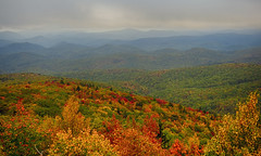 Fall Colors at Rough Ridge (BlueRidgeKitties) Tags: canonpowershotsx40hs blueridgeparkway roughridgeoverlook westernnorthcarolina southernappalachians