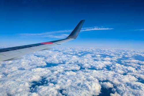 日本航空 / JAL