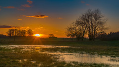 Just a sunset on the field - Einfach ein Sonnenuntergang über den Feldern (ralfkai41) Tags: landscape landschaft sonne wasser outdoor natur mirroring sun sonenuntergang wasserspiegelung spiegelung nature feld reflektion sunset reflexion field grouptripod