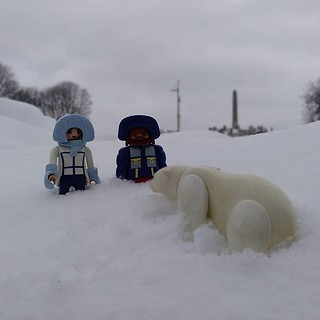 Hello. My feet are cold! #playmobil #polarbear #oslo #snow #cold