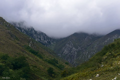 In the morning fog (Jotha Garcia) Tags: landscape sky mountains niebla fog junco asturias españa spain principadodeasturias 2017 verano september septiembre summer jothagarcia nikond3200 nikkor5502000mmf4056 piedras stones