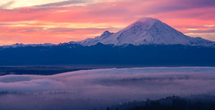DSC05496 (www.mikereidphotography.com) Tags: sonyalpha zeiss canon seattle rainier sunrise fog