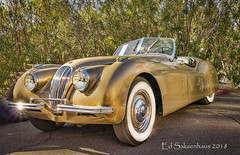 Vintage Jaguar (Edward Saksenhaus RPh.) Tags: car auto vehicle british england sportscar transportation racer fast speed classic old vintage jaguar