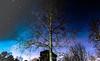 Night Sky (kaylea.viadero) Tags: night star stars tree milkyway midnight color dark late backyard atlanta georgia north nature sky space outer center 365 365project exposure new neighborhood nightout adventure art abstract light lifestyle large lastminute life lights