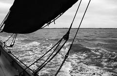 Along the East coast (David Ian Ross) Tags: monochrome voyage 35mm nikon red sails port hemp canvas lead aft crew north sea mainsail deck east smack tar water coast