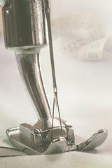 "El tiempo entre costuras. ""The time between seams"" (amjs63) Tags: eltiempoentrecosturas macromondays aguja costura maquinadecoser metro myfavouritenovel 50mm closeup prensatelas"