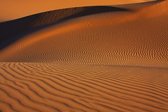 Imperial Sand Dunes - California (Steve O'Day) Tags: photography california sand dunes wind nature imperialsanddunes canon shapes shadows form explore travel desert southwest