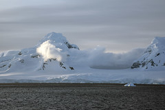 Brown_2017 12 11_3129 (HBarrison) Tags: harveybarrison hbarrison antarctica antarcticpeninsula paradiseharbor brownstation arctic antarctic arcticantarctic
