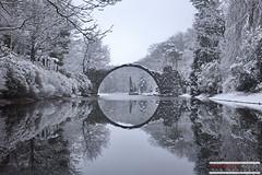 Winter peacefulness (Sébastien Pignol Photographie) Tags: winter snow peace neige lac lake landscape symetrie reflet parc park rhododendron hiver tree arbre germany allemagne bridge pont reflect
