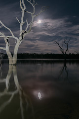 Lake Eppalock 2 (Matt OZW) Tags: lakeeppalock night moon landscape eclipse moonlight