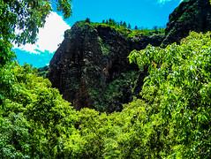 Hawaii-WaimeaCanyon-91.jpg (Chris Finch Photography) Tags: landcapes hawaiiphotography kauai waimeacanyon rainforest canyon river jungle falls chrisfinchphotography landscapephotographer hawaii waimea landscapephotographs grandcanyonofthepacific photographs landscapephotography canyons ocean waterfall waterfalls chrisfinch photography island landscape pacificocean islands wwwchrisfinchphotographycom valley