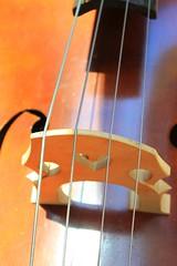 The Double Bass -#4 (TWO7rabbit) Tags: doublebass standupbass uprightbass bass musicalinstrument abstract abstractphotography bassdetail photobybrianswyatt