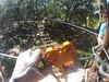 G0121236 (harleyhurricane1) Tags: line zip zipline ziplinepark dadecityflorida treehoppers centralflorida largestziplineparkincentralfl dadecity
