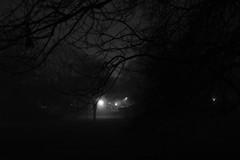 A Walk in the Park (Andreas Steffen) Tags: nacht night schwarzweis bw park bäume trees dark dunkel moody fuji xt20