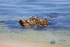 Monteray - 2014-16 (@Digbeyphoto) Tags: california monteray westcoast monterey unitedstates us