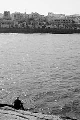 The fisherman of Marsaskala (Red Cathedral uses albums) Tags: redcathedral aztektv sony alpha slt mkii sonyalpha a77ii a77 dslr sonyslta77ii translucentmirrortechnology wanderlust digitalnomad streetart urbanart contemporaryart graffiti urbex hiking protest activism alittlebitofcommonsenseisagoodthing eventcoverage streetphotography travellingphotographer travel livinghistory blackandwhite zwartwit noiretblanc marsakala malta beach sea solitude lonesome alone solo sollitude loneliness