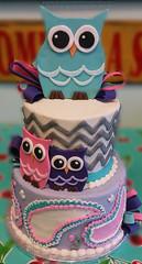 owls (backhomebakerytx) Tags: kid birthday cake owl chevron paisley cute girl backhomebakery