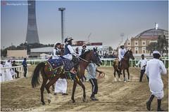 IMG_7033 copy (Services 33159455) Tags: qatar doha horse racing qrec emir horseracing raytohgraphy