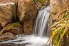 Little Falls (Fiddling Bob) Tags: sarahpdukegardens durhamnc waterfall