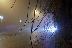 Foggy Night Light Reflections (Bluebelle Photography) Tags: fog foggy night nature weather light shadow reflections samsung galaxy s7 phonography photography cell phone mobile street road traffic