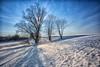 Cold Winter Sunlight (++sepp++) Tags: landscape landschaft landschaftsfotografie schnee winter gegenlicht backlight backlit snow graben bayern deutschland de sonnig sunny bavaria germany bäume trees
