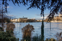 Inondation - Paris - (Noir et Blanc 19) Tags: paris seine inondation crue jardin jardintinorossi sculpturecontemporaine sony a77