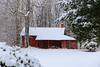 samsebeskazal-2265.jpg (samsebeskazal) Tags: winter newjersey ringwood