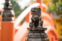 Celestial lion (dakw23) Tags: lion bridge nanliangarden kowloon 85mm18 batis fe a7rii