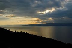 Jezioro Galilejskie (12)
