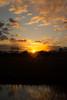 Sundown near river Aa - Veghel (MartijnMol1976) Tags: sundown veghel meierijstad rivier river aa skyline sky zonsondergang kleuren kleur noordbrabant sony sonya58 tamron tamron1750 tamronspaf1750mmf28xrdiiivcasphericalif martijnmol natuur nature riet nederland thenetherlands avond evening