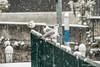 Sale Marasino nevicata (DavidGutta) Tags: neve snow nevicata iseo lago acqua freddo gelo snowing water waterfront nave città lake