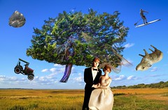 Bride & Groom in the Wind (Rusty Russ) Tags: bride groom wind tree gale flying colorful day digital graffiti window flickr country bright happy colour eos scenic america world sunset beach water sky red nature blue white green art light sun cloud park landscape summer city yellow people old new photoshop google bing yahoo stumbleupon getty national geographic creative composite manipulation hue pinterest blog twitter comons wiki pixel artistic topaz filter on1 image reddit