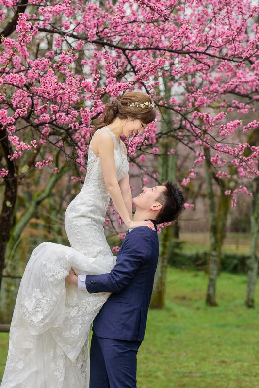 樂許婚紗,JH florist, 巴洛克ZOE,京都婚紗,奈良婚紗,海外婚紗,新祕Nita,櫻花婚紗,Le Chic Bridal,MSC_0037
